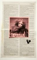 http://alejandrogarciacontreras.com/files/gimgs/th-26__MG_9826.jpg